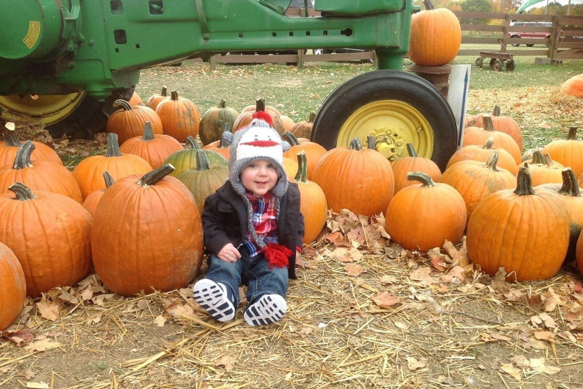 a toddler sitting in front of a bunch of pumpkins at the pumpkin patch